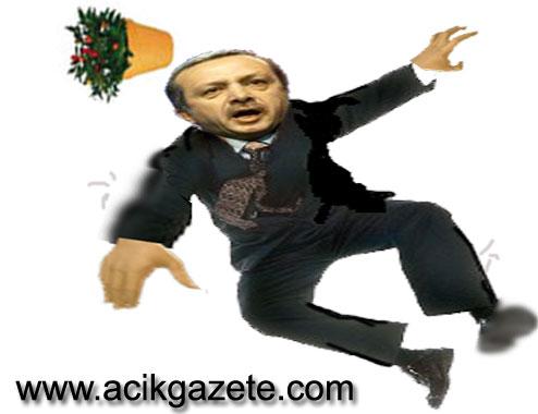 Tayyip Erdoğan, saksı