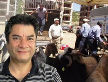 Yusuf Yavuz, hayvan pazarı